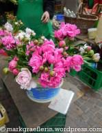 Loerrach Markt 9