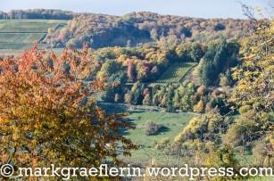Herbstwanderung Eggenertal 17