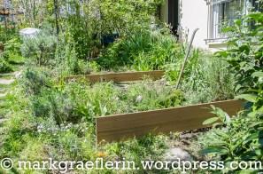 Garten Mai 2016_2
