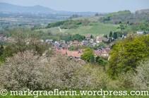 Blick auf BAd Bellingen