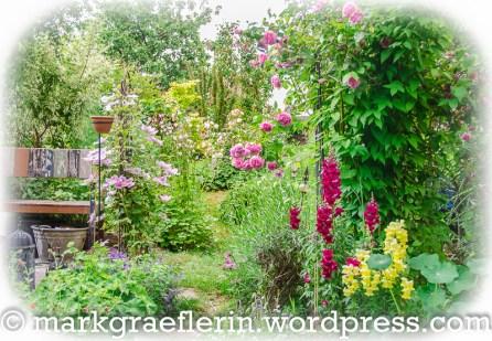 Garten Anfang Juni 20