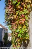 burgund-mit-avanti_5_flavigny-14
