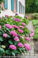 Englischer Garten Hugstetten 5