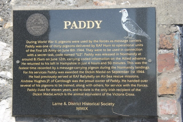 The Paddy The Pigeon plaque in Carnlough