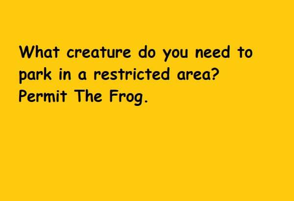 permit the frog