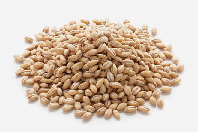 Barley, hulless
