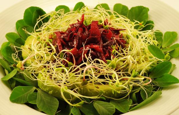 fenugreek-salad