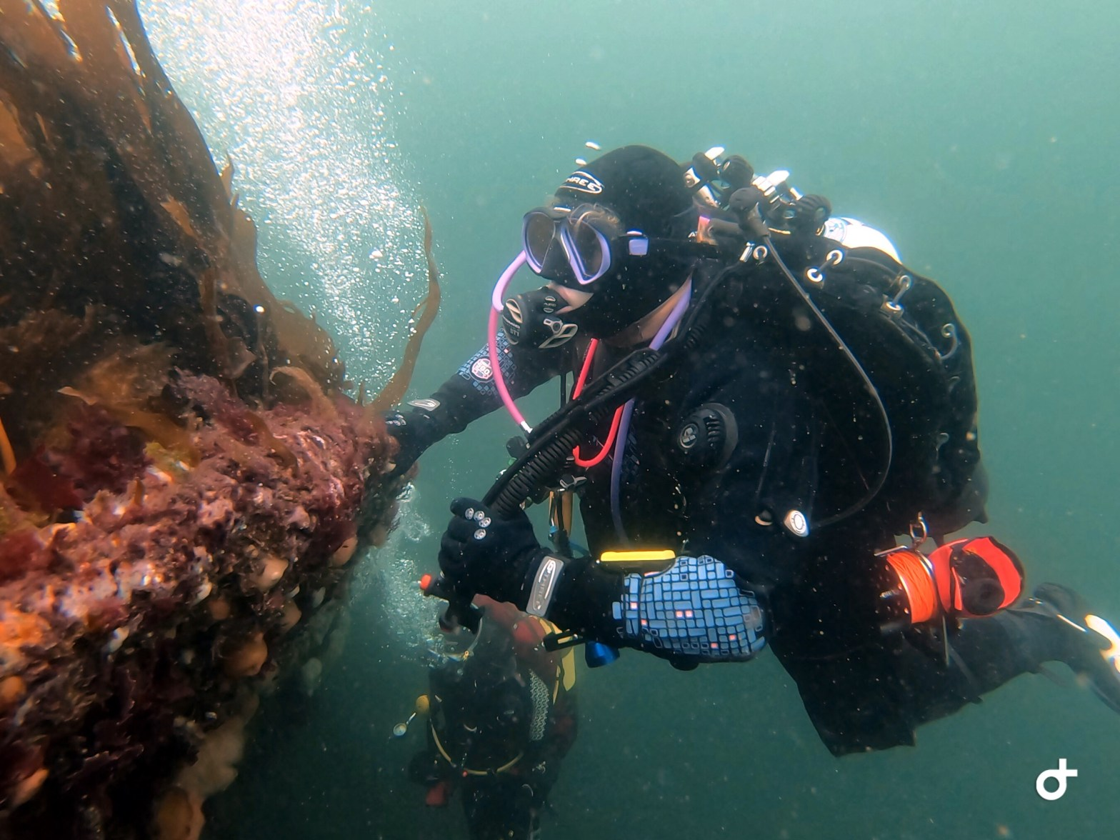 Twinset Diver on the Rondo in the Sound of Mull