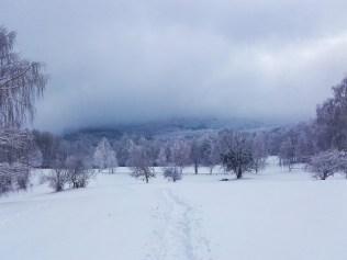 gorjanci_markor_blog-131652