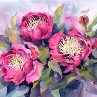 Watercolor Paintings by Rachel McNaughton