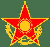 roundel -Kazakhstan_AF_roundel_svg