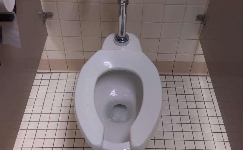 Flush when using public toilets.