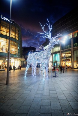 Christmas Shopping 5