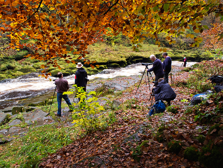 Yorkshire  Photography Workshop - Bolton Abbey