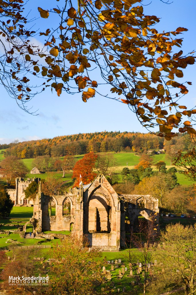 Bolton Abbey in Autumn, Wharfedale, Yorkshire Dales