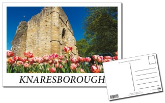 Knaresborough Castle Postcard