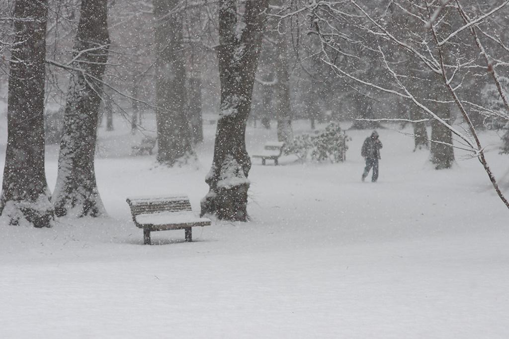 /home/springm/Bilder/2010/2010-03/Karlspark/dsc26772b.jpg