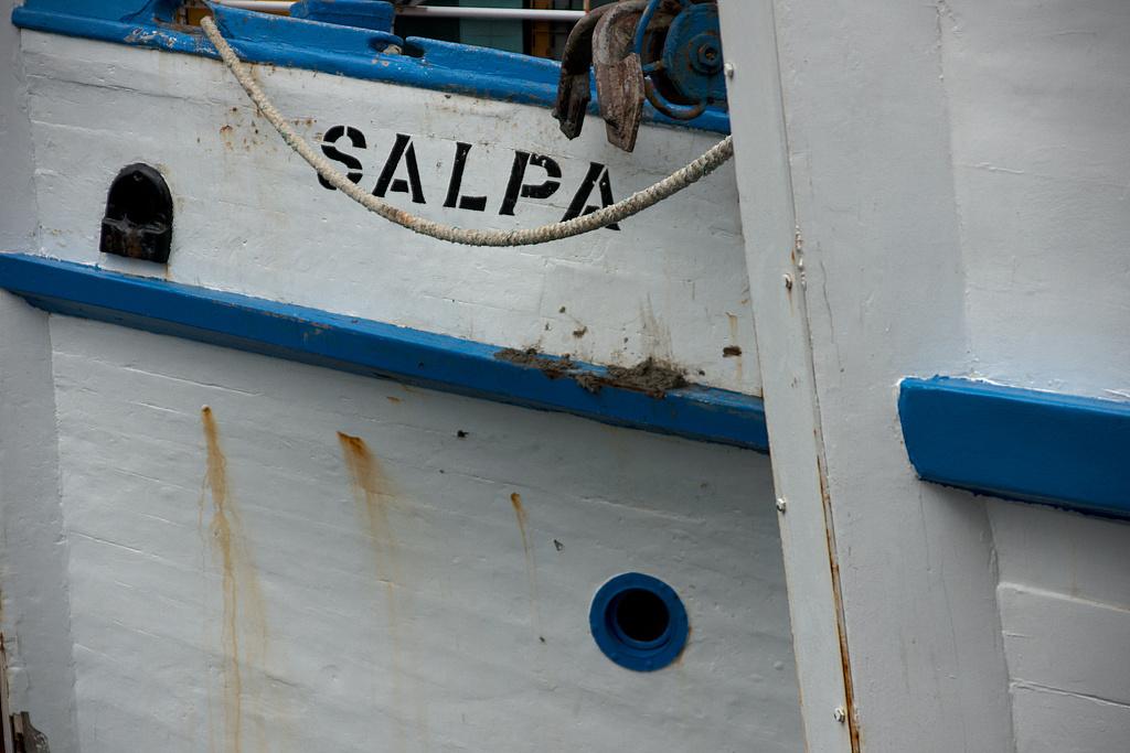 SALPA's eye