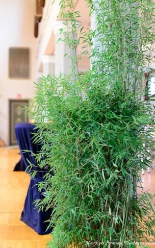 Bambus und Stehtische