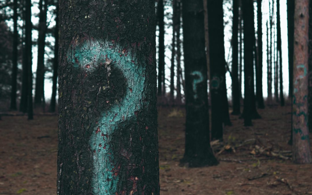 9 Diagnostic Questions to Fight Fear and Anxiety