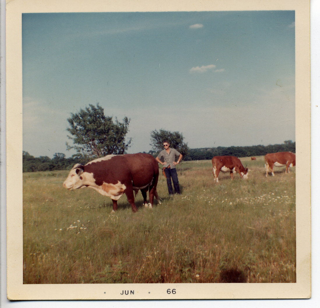 22 - RB with Cows