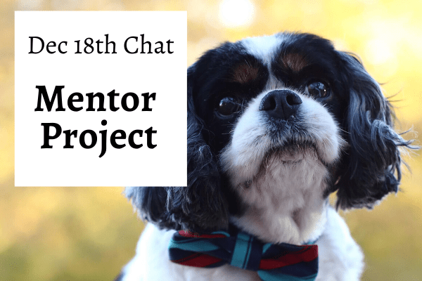 Mentor Cover Chat