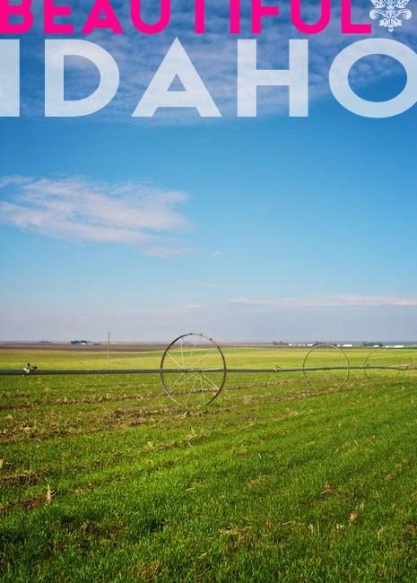 Idaho-Potato-Tour-Marla-Meridith-IMG_3022