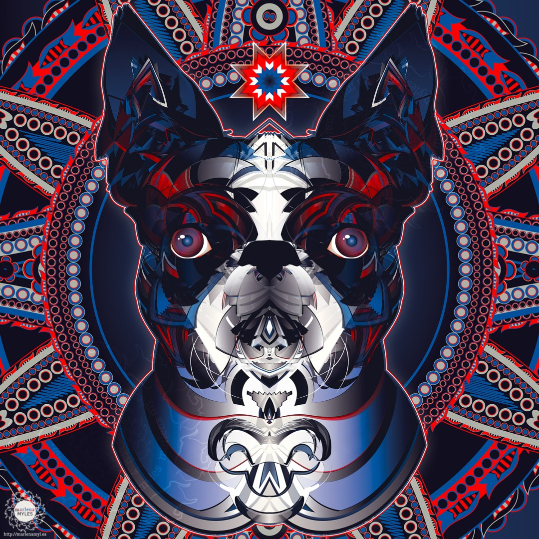 sunka nagi, dog spirit | Native American Art