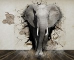 The Undiscussables: How to Address the Elephant in the Room