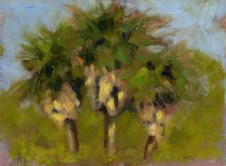 Three Palm Trees, oil, 6 x 8 inches