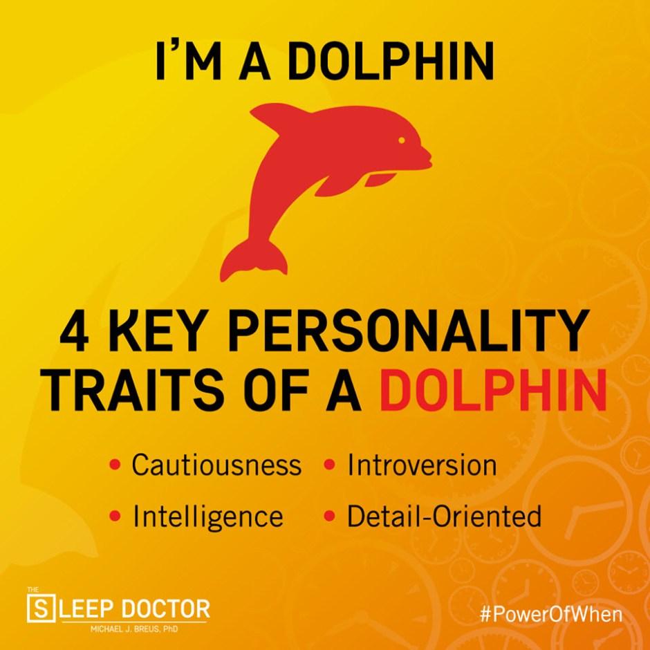 chronotype dolphin