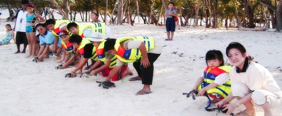 Kegiatan cinta lingkungan anak saat melepas kura kura di gili meno - Anda dapat mengajari anak anda pada kegiatan ini di paket wisata lombok kami, kontak kami di nomor Hp / whatsapp +6287864575957