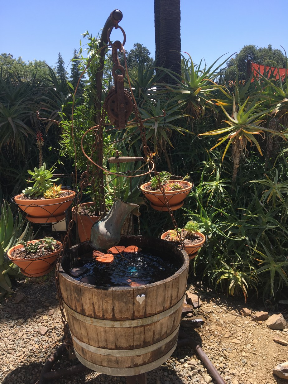 Sculptures and Fountain at the Ruth Bancroft Garden