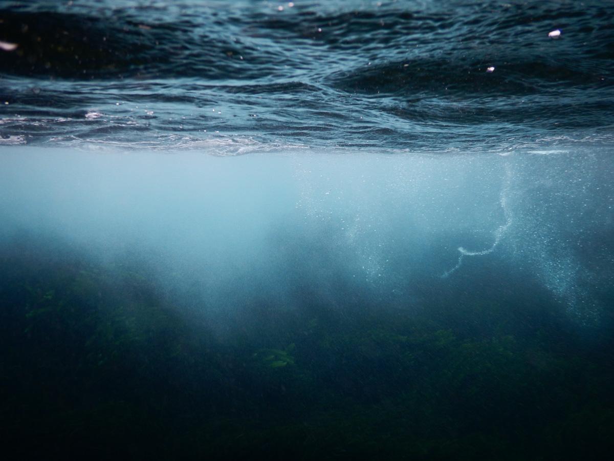 Underwater Mornington Peninsula Bass Strait Coast Winter