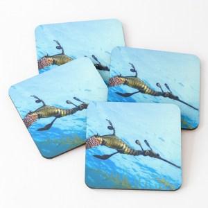 Drink Coasters Weedy Seadragon Print