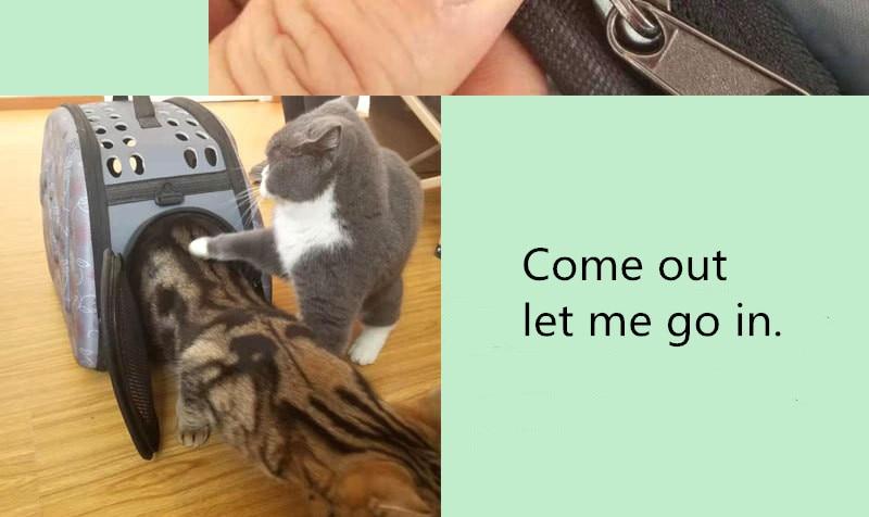 Sacchetto Dell'animale Domestico di modo Esterno Portatile Pet Traspirante Borsa del Sacchetto di Spalla Spazio EVA Gatto Cane Zaino Da Viaggio Pieghevole Sacchetto di Spalla del Gatto