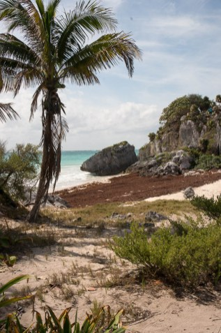 Playa-del-Carmen-2017-03-119