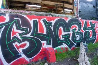 Street photography on Bainbridge Island