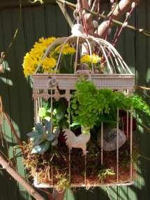 June 20 Birdcage Planter Marlow Floralworks Online Store