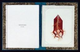 4-libro-almas-que-iluminan-4