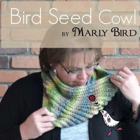 Bird Seed Cowl by Marly Bird -- Free Pattern and Video Tutorial