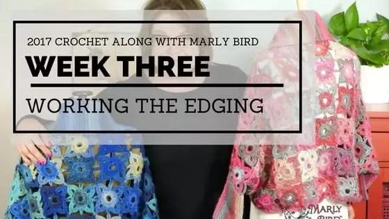 Marly Bird and Red Heart Crochet Along Week 3-Edging