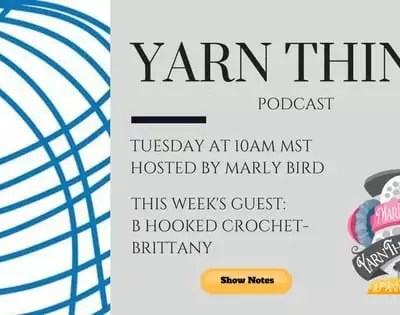 Tunisian Crochet for Beginners with B Hooked on the Yarn Thing Podcast