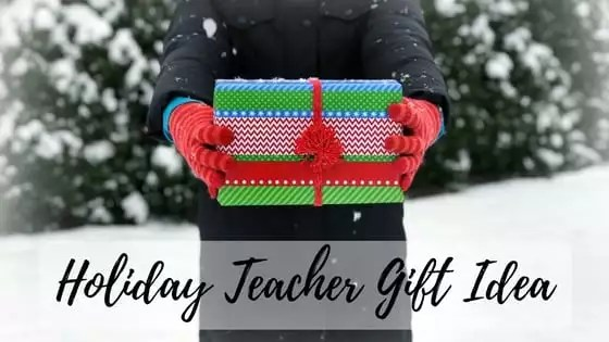 Holiday Teach Gift Idea-Collage Seed Stitch Cowl