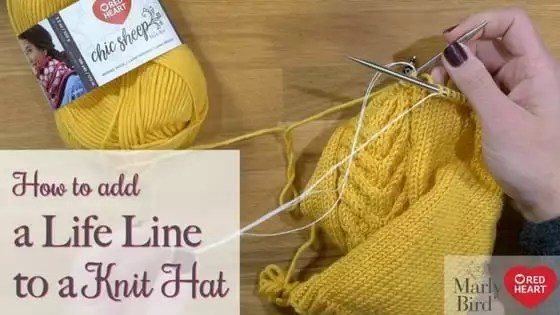 Video Tutorial-Adding a Life Line to your Knitting