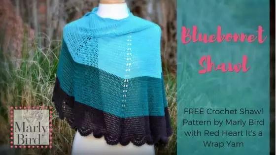 FREE Crochet Shawl Pattern by Marly Bird-Bluebonnet Shawl