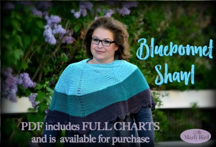 Bluebonnet Shawl by Marly Bird