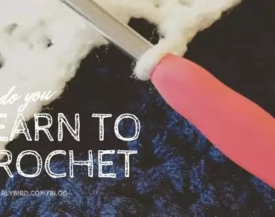 How do you Learn to Crochet-online, from books, in person or something else…