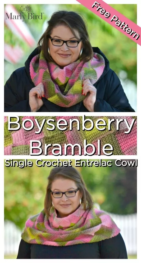 FREE Boysenberry Bramble Cowl, Learn to Single Crochet Enterlace with this amazing crochet cowl pattern
