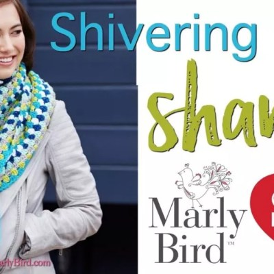 Shivering Chic Crochet Shawl by Marly Bird